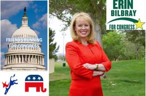 2014 Friends Running For Congress (Part 1): Erin Bilbray (NV-3)