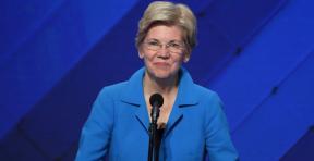 Elizabeth Warren: The 7 IssuesGuide