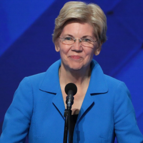 Elizabeth Warren: The 7 Issues Guide